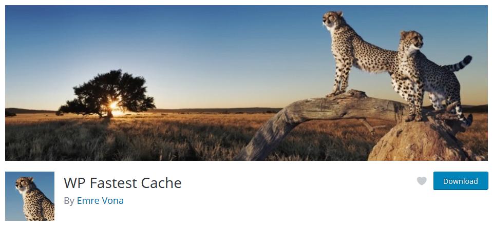 بهترین افزونه کش وردپرس - WP Fastest Cache