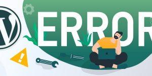 مراحل عیب یابی و رفع خطا : رفع 90٪ از مشکلات و خطاهای وردپرس